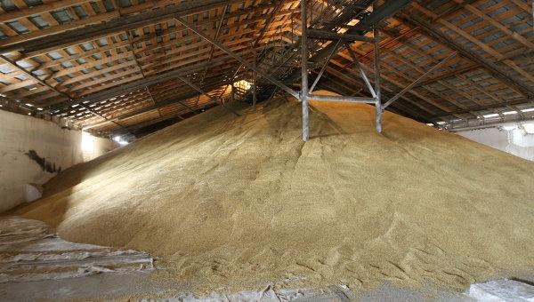 На Украине «куда-то пропали» 250 тысяч тонн зерна