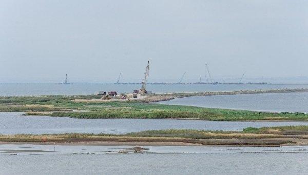 Строительство Керченского моста угрожает 13-ти видам краснокнижных птиц