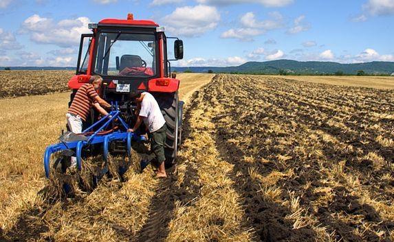 Севастопольские фермеры получили госгранты на развитие хозяйства