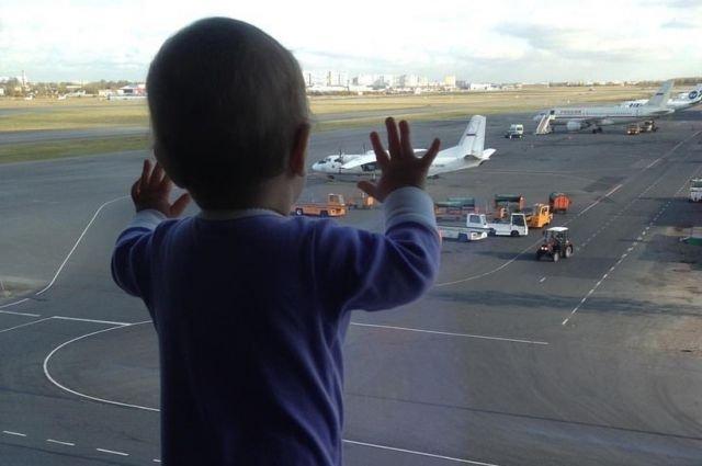 Катастрофа над Синаем: год с момента гибели 224 пассажиров