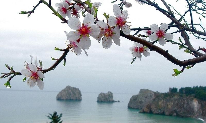 Понедельник в Крыму будет без осадков