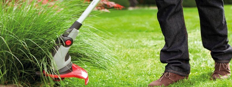 Севастопольские коммунальщики рассказали, почему в городе не косят траву