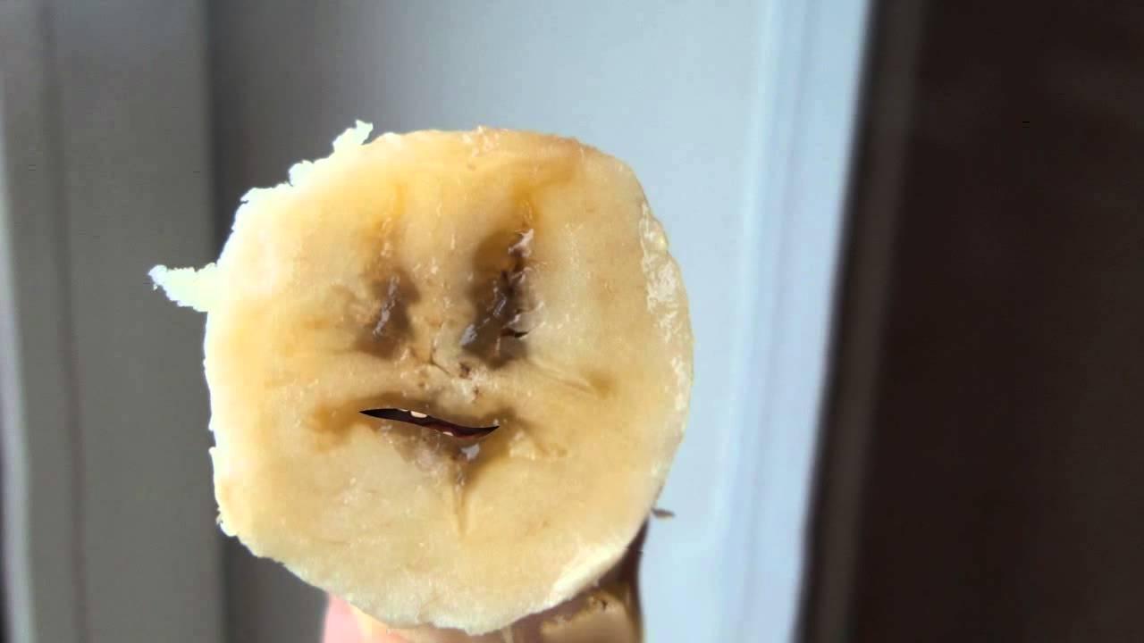 В Крыму женщина выгуливала на поводке банан
