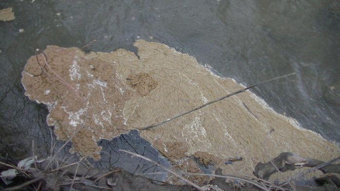 По Ялте два месяца течет канализационная река