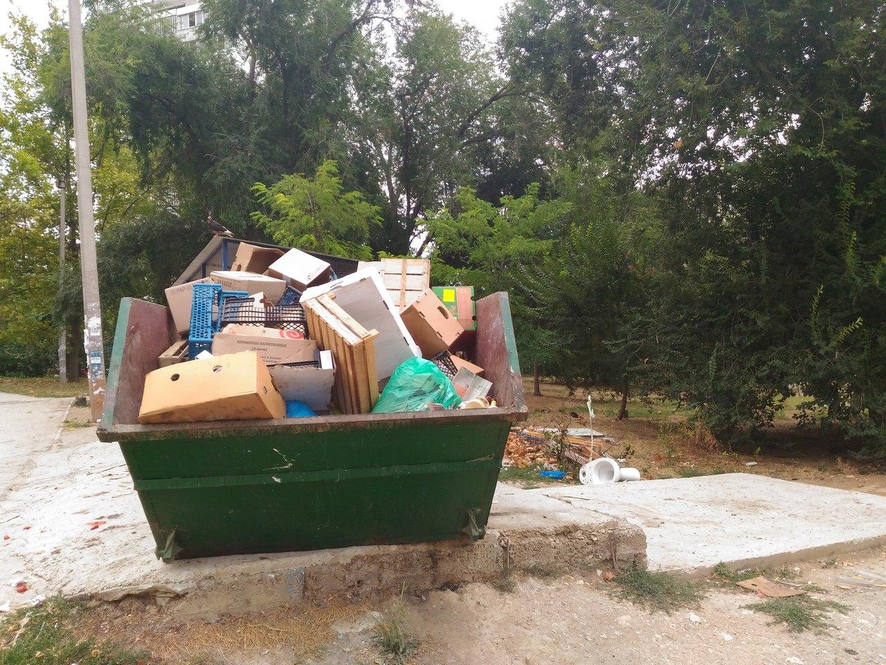 Дома под управлением «УК Гагаринского района-2» утопают в мусоре