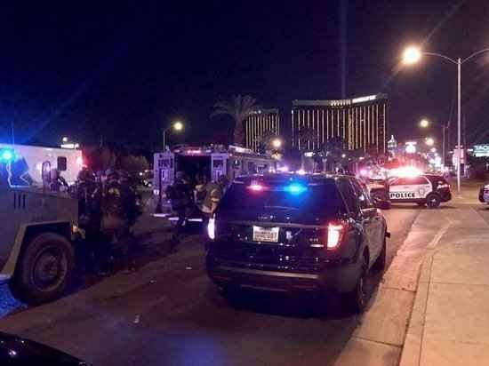 Поклонская связала трагедию в Лас-Вегасе с «Матильдой»