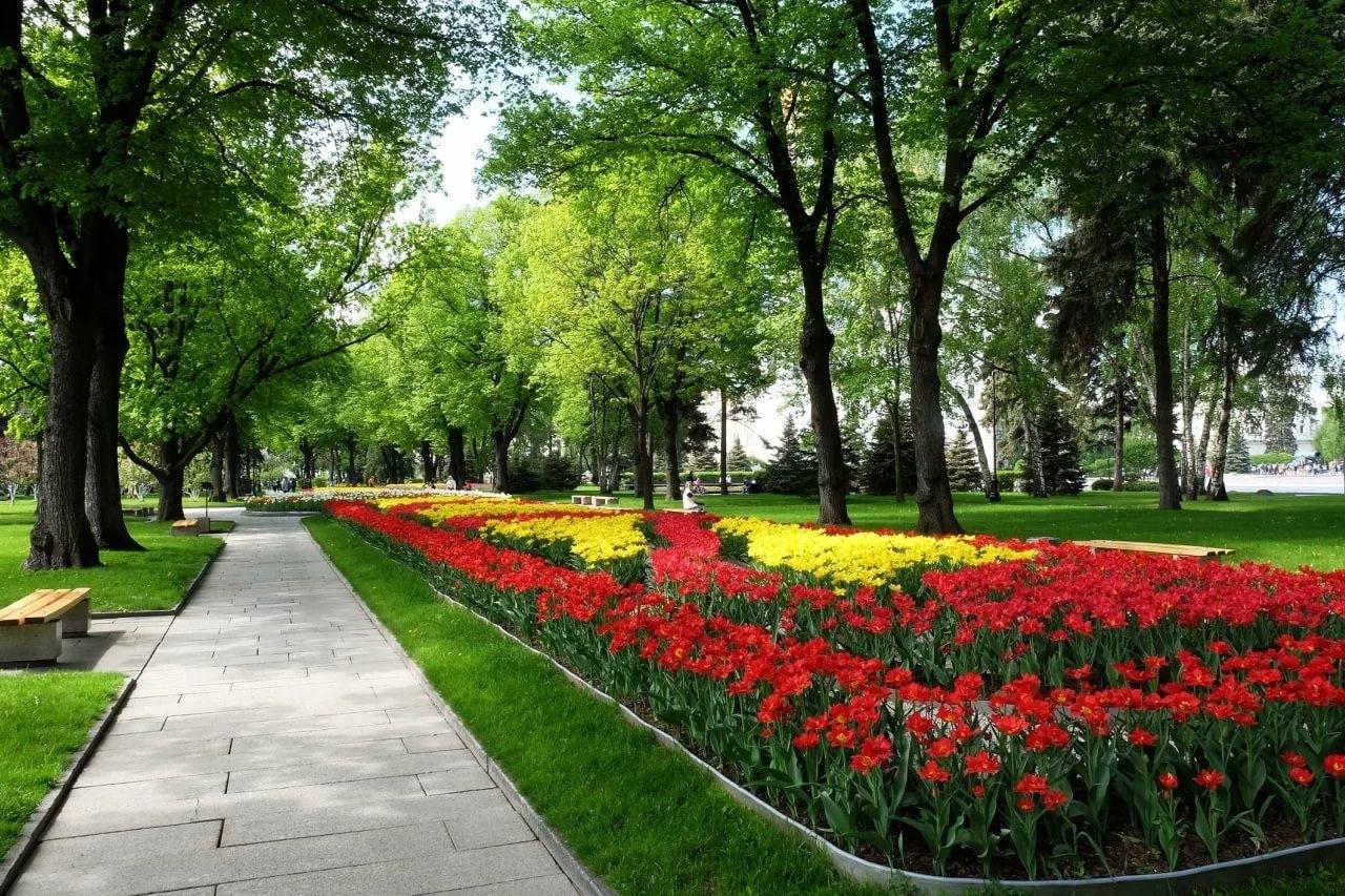 В Севастополе появятся новые скверы — где и когда