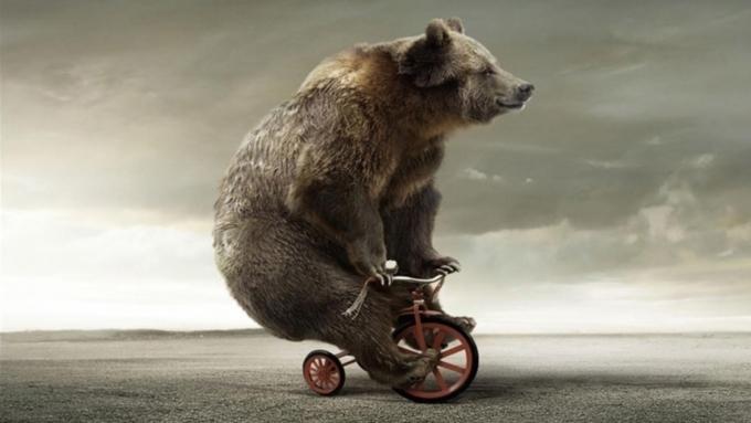 Медведи и криптофермы Николаева «переезжают» из Инкермана в центр Севастополя