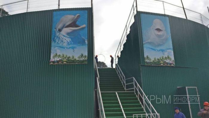 В Ялте сносят дельфинарий Зубкова