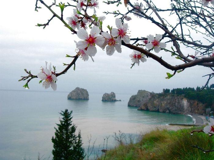 В Крыму без осадков, до 7 градусов тепла (прогноз погоды на 20 февраля)
