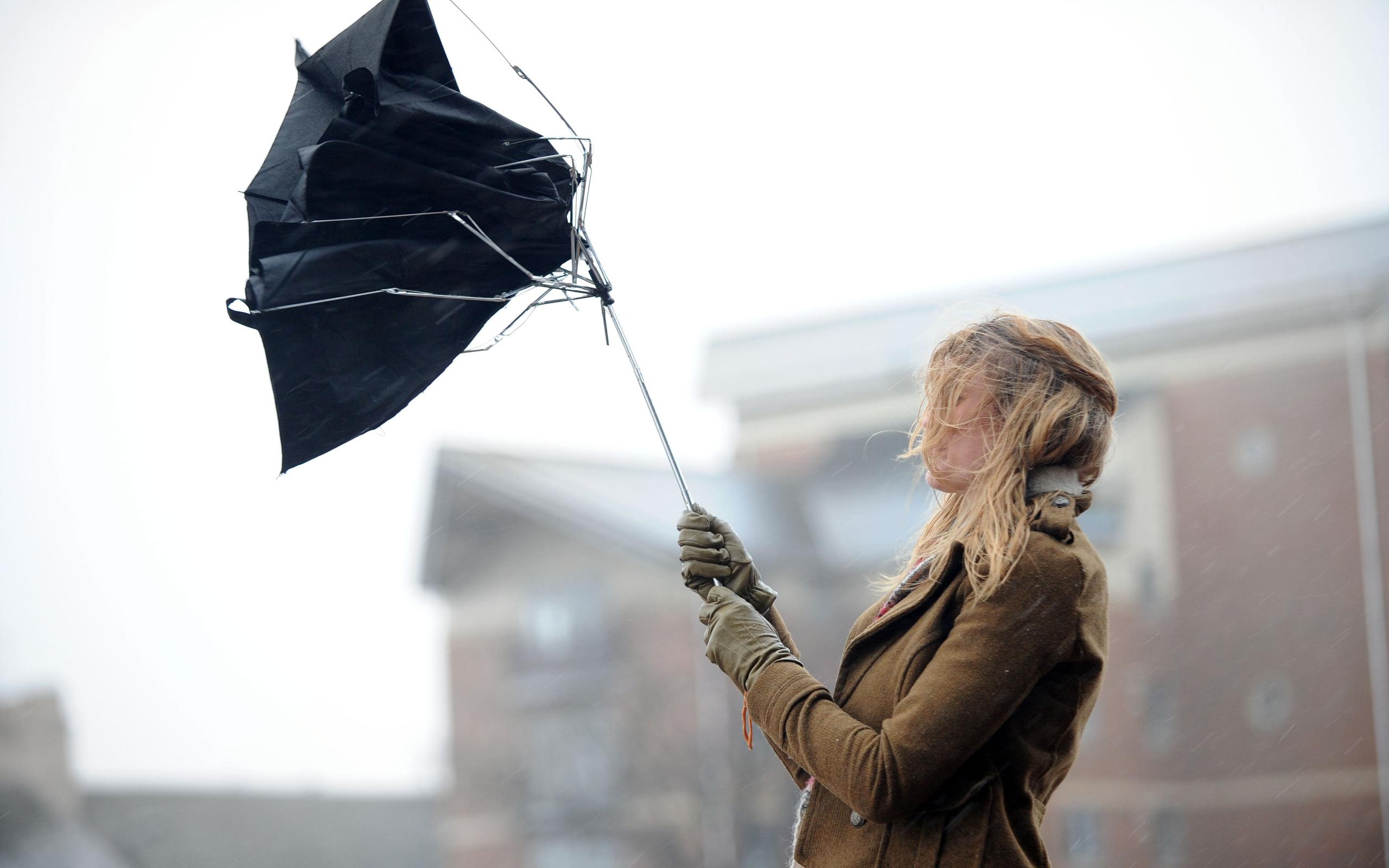 МЧС предупреждает: на Севастополь надвигается штормовой ветер