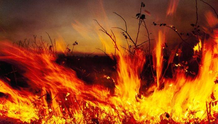 Внимание! МЧС экстренно предупреждает о пожарной опасности наивысшего уровня в Крыму