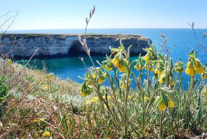 Блог путешественника по Крыму: Тарханкут — тайна западного побережья