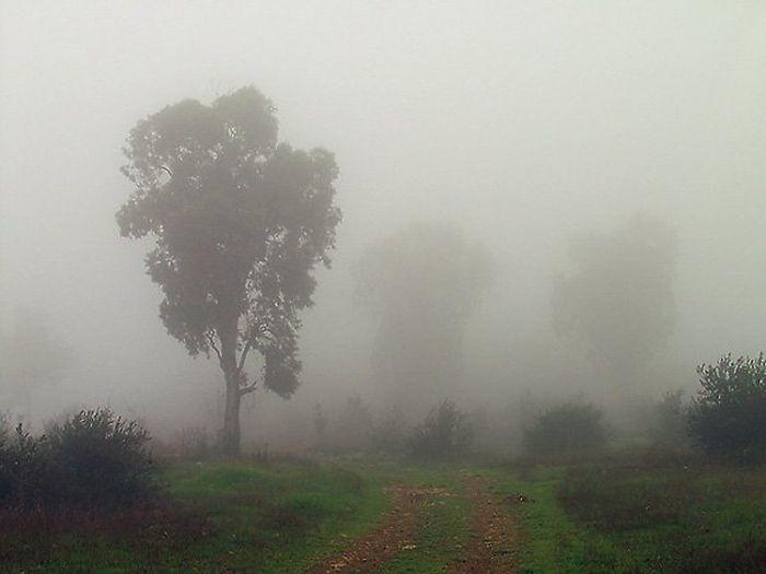 Под Симферополем нашли двух заблудившихся в тумане туристов