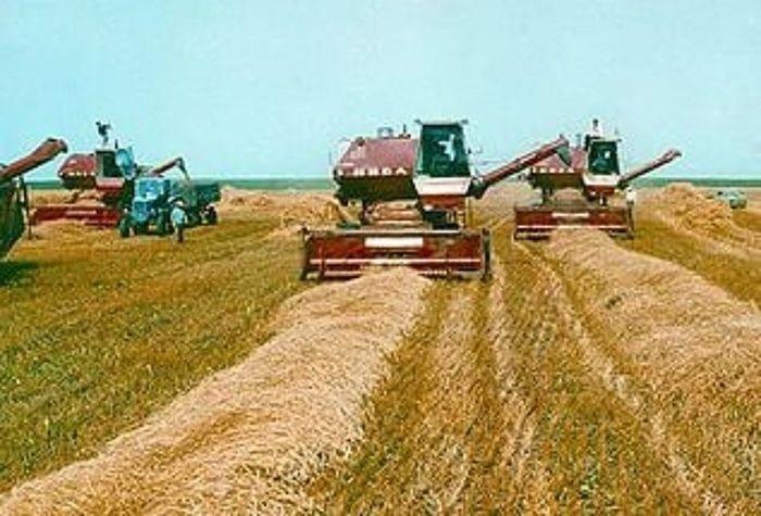 В Крыму хотят возродить колхозы