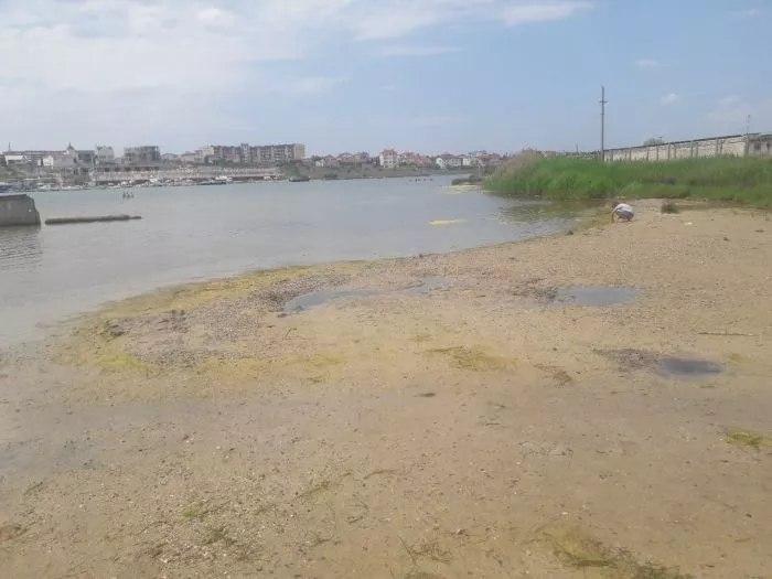 В правительстве заявили, что севастопольские пляжи не готовы к курортному сезону