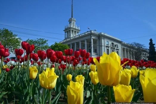 Водоемы, беседки, цветочные инсталляции: в городе готовятся к фестивалю «Севастополь в цвету»