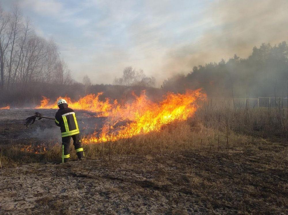 В Крыму за праздники произошло больше ста пожаров из-за людей