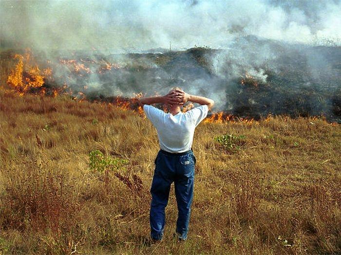 В Севастополе за неделю выгорело 7 гектаров травы