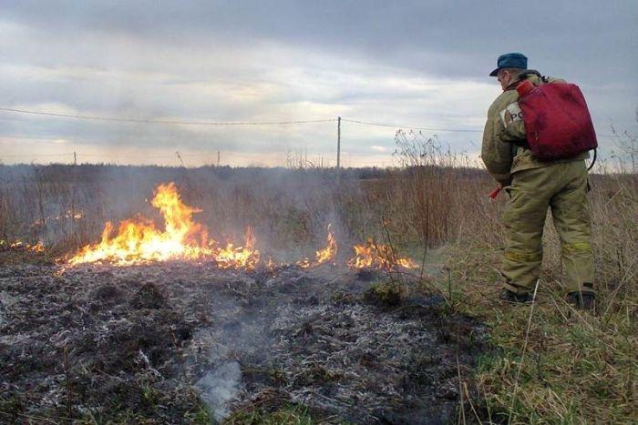 В Крыму сгорели комбайн и посев ячменя