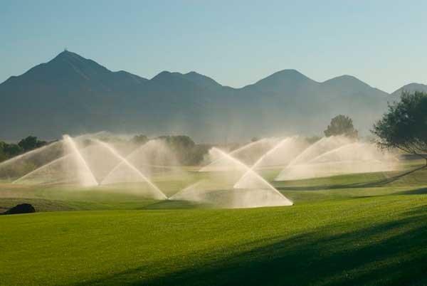 Учёные Крыма предлагают очищать воду из канализации для полива полей