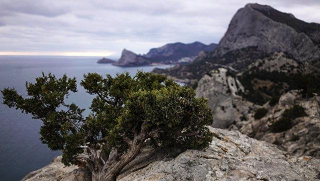 Туристы из Тулы заблудилась ночью в горах в Новом свете