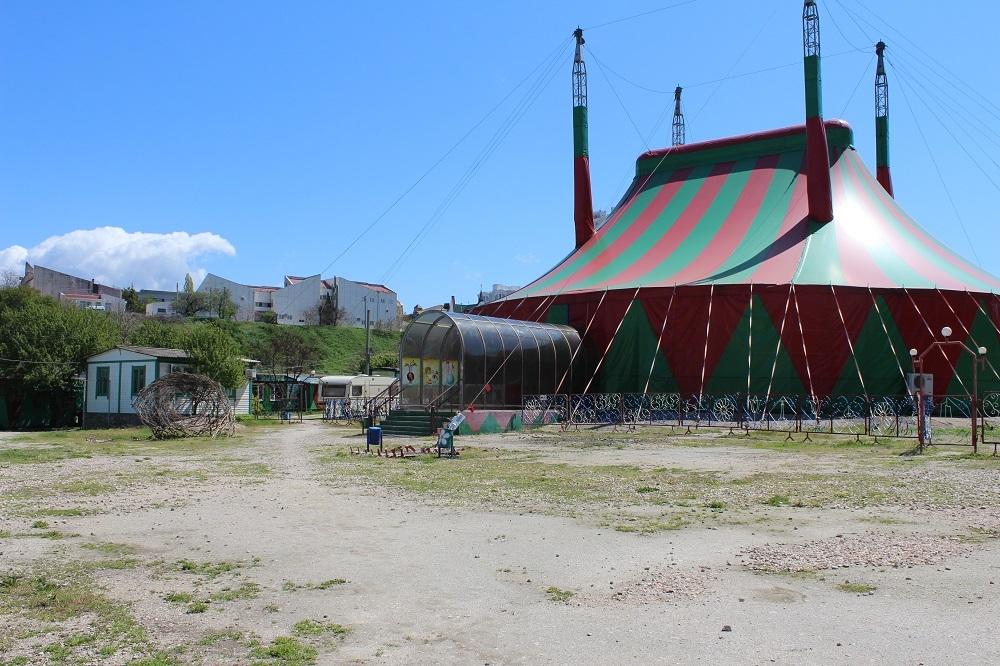 Индийские слоны, кенгуру-боксёры, джигиты на страусах: в Севастополе снова начнёт работать цирк на Пожарова