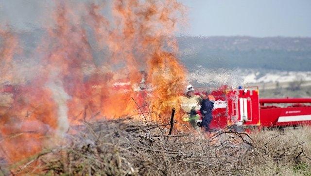 В Крыму за сутки сгорели тонны сена и пшеницы