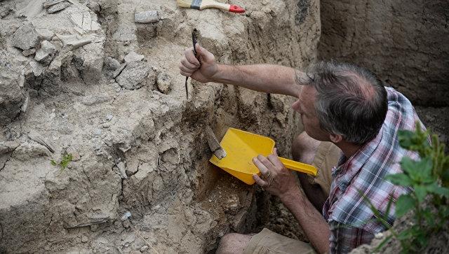 В Крыму обнаружили склеп с Геркулесом