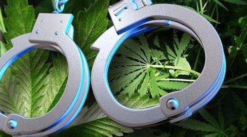 В Севастополе задержали подозреваемого в сбыте марихуаны