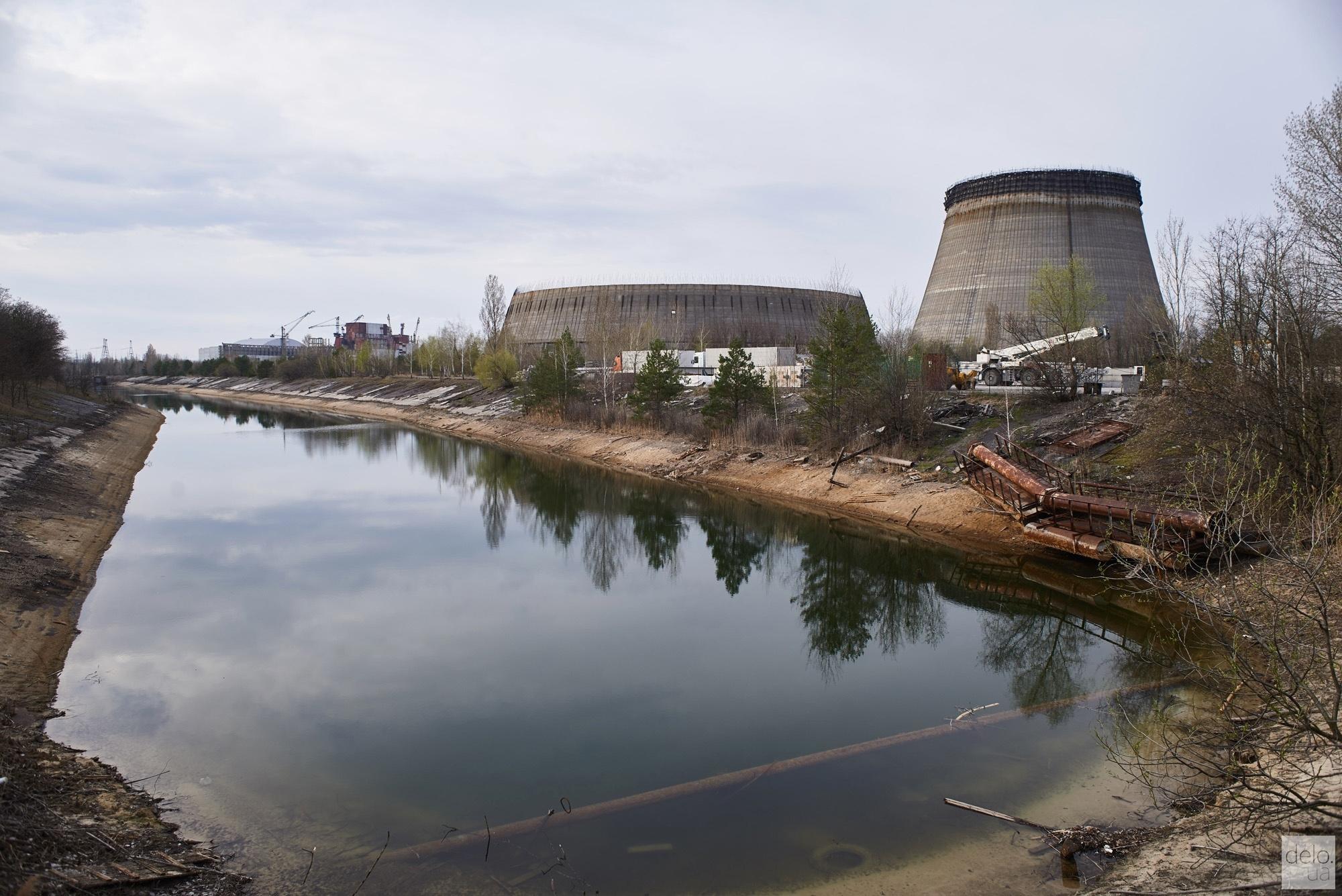 В зараженном водоеме Чернобыля спасали лося