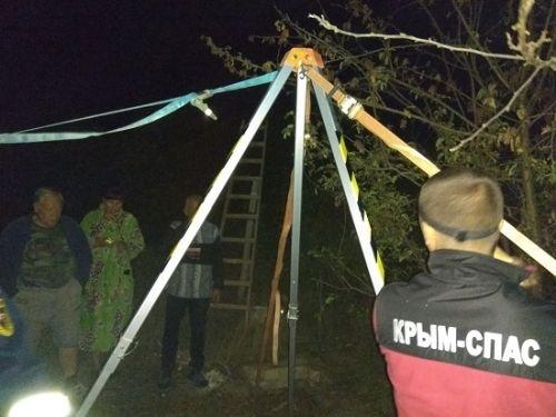 Феодосийские спасатели вытащили из бассейна лошадь