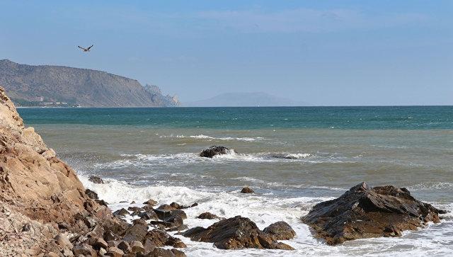 Названа возможная причина крушения сухогруза у берегов Севастополя