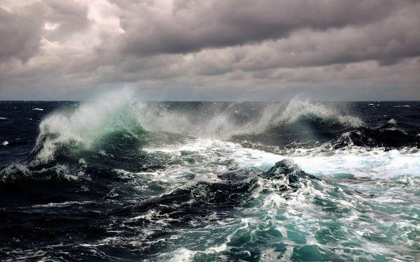 В акватории Черного и Азовского морей приостановлено судоходство