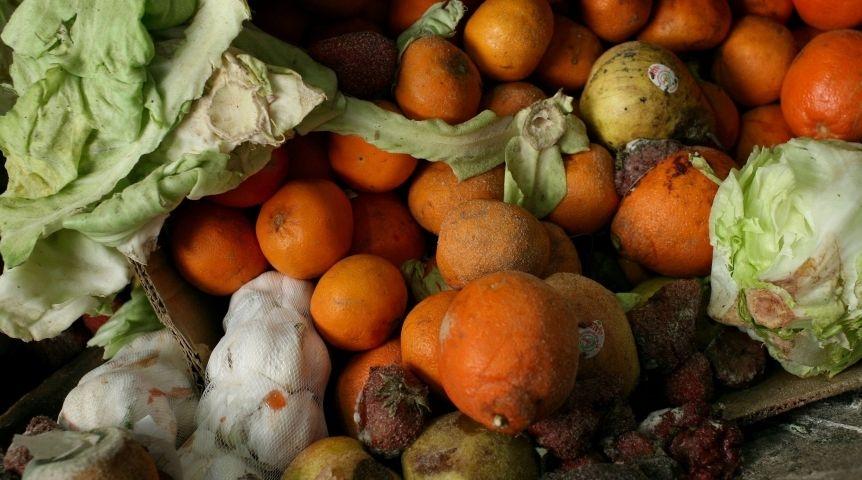 В Крыму в школу поставляли испорченные и запрещённые продукты