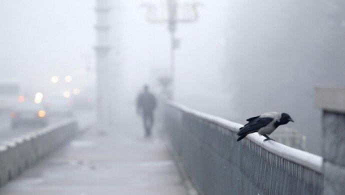 В Крыму ожидается плохая видимость и ветер (прогноз погоды на 21 ноября)