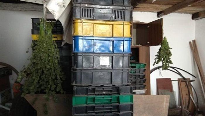 У жителя Феодосии дома нашли семь килограммов наркотиков, оружие и боеприпасы
