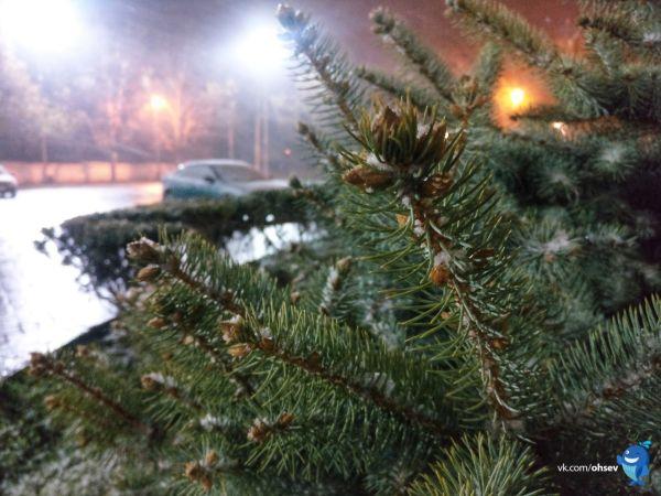 В Севастополе выпал снег. Коммунальные службы в режиме повышенной готовности