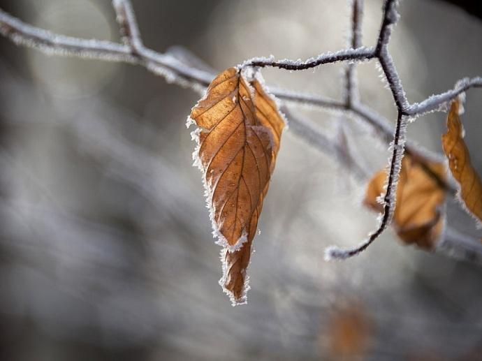 Скандинавский антициклон несёт в Крым непогоду (прогноз на 29 ноября)