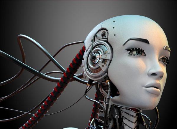 В Крыму предложили открыть «роботобордель»