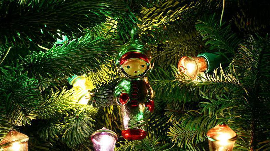 Стало известно, сколько россиян хранят новогоднюю елку до лета