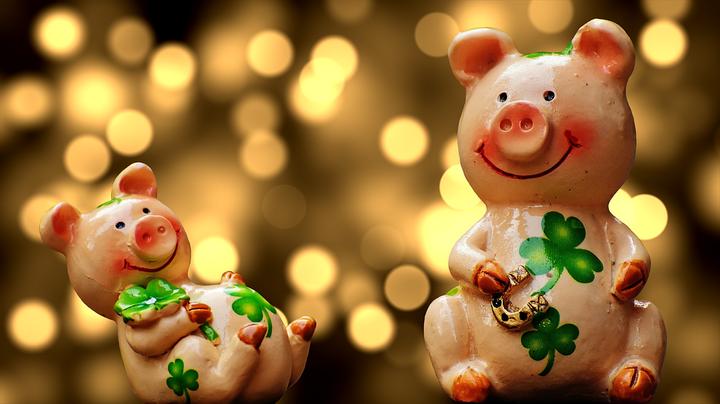 Как привлечь удачу в год Свиньи