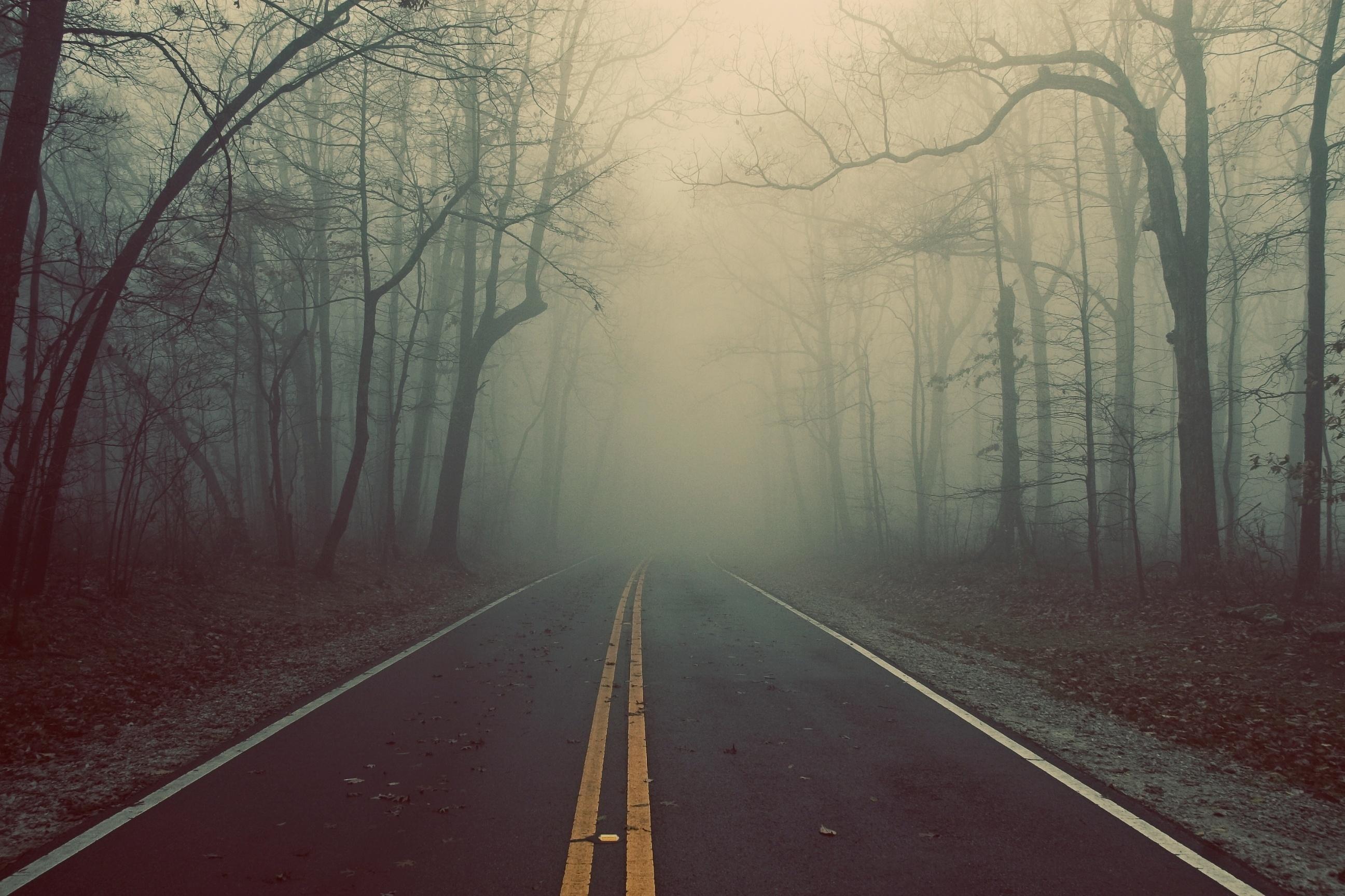В Крыму неделя начнется с тумана, дождей и ветра (прогноз погоды на 3 декабря)