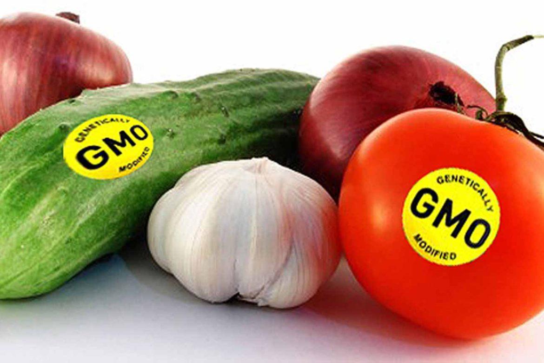 Вступило в силу решение об обязательной маркировке продуктов с ГМО