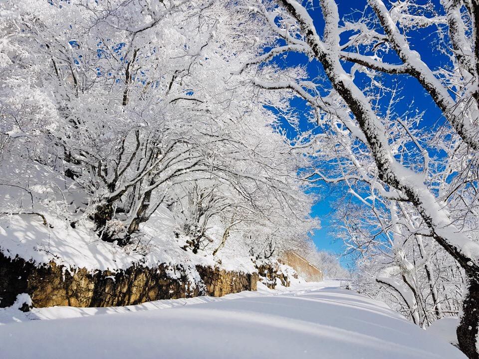 Объединение Крыма и Севастополя, Ай-Петри в снегу, бесплатный каток в Севастополе: итоги пятницы