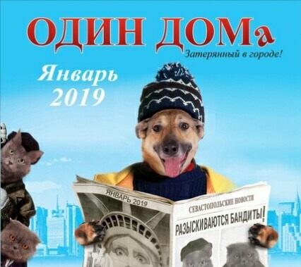 В Севастополе издали благотворительный календарь со спасёнными животными