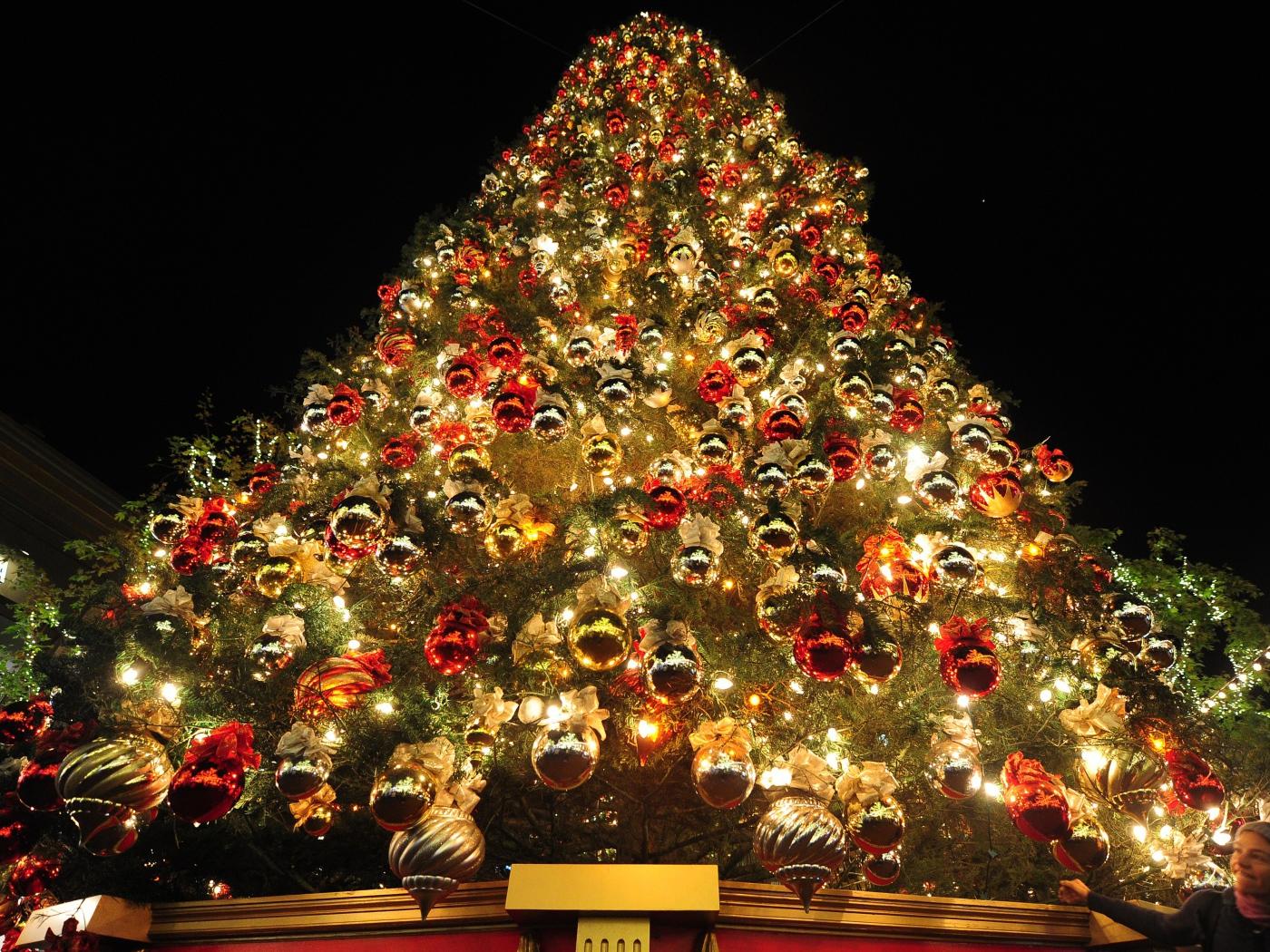 Новый год в Севастополе: расписание катка, программа мероприятий, список артистов