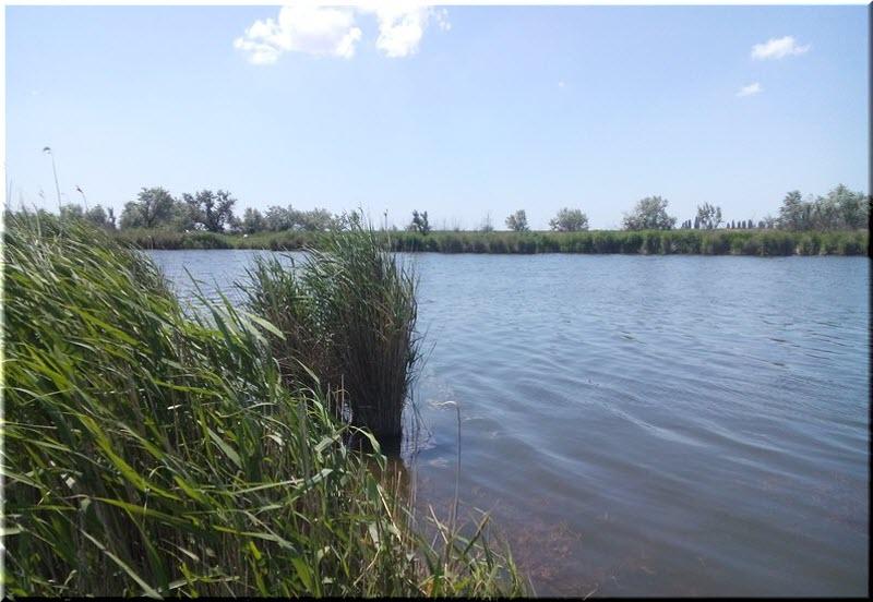 Житель Крыма оштрафован за перекрытие реки