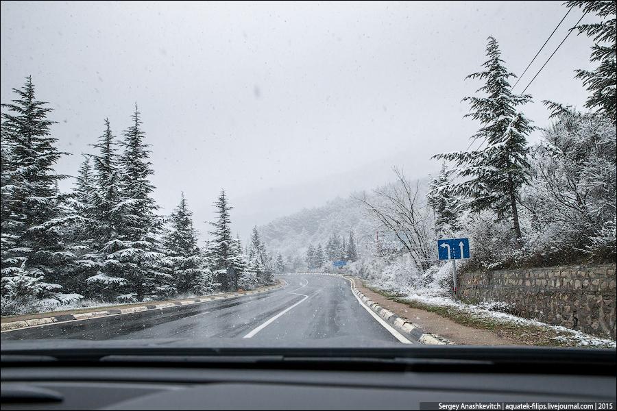 Снежная крупа, гололедица, дождь: чего ждать от погоды в Крыму 17 января