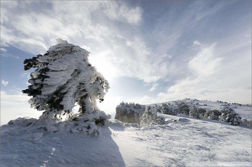 Ветер, снег и гололедица: какая погода будет сегодня в Крыму и в Севастополе
